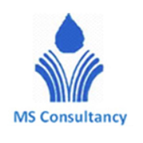 MS Consultancy